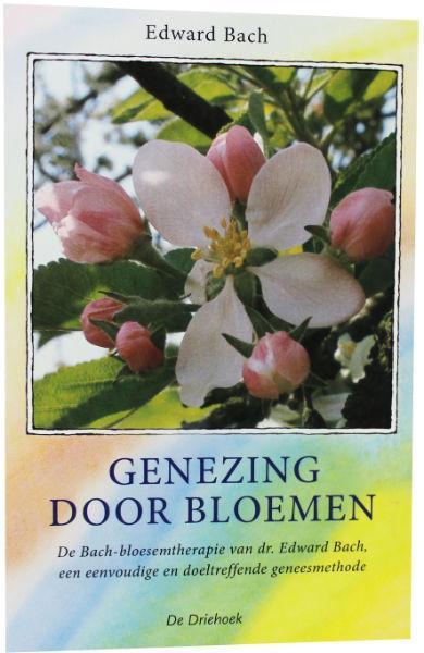 Genezing Door Bloemen Boek