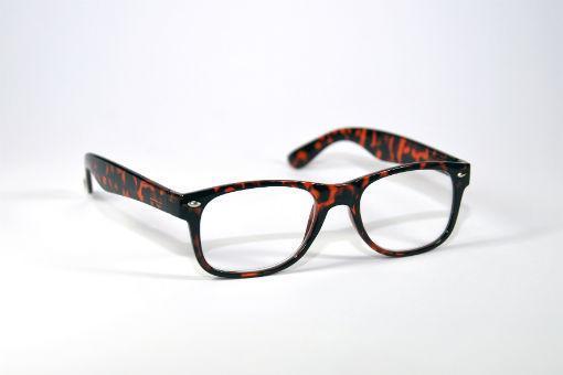 e433e1386f9157 de leesbril is glanzend met een natuurlijke printvan transparant oranje  bruin tot zwart