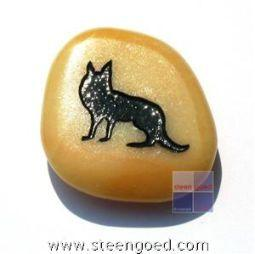 Steengoed Talismansteen Coyote